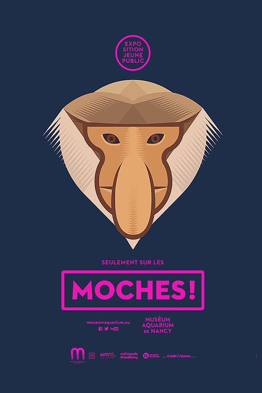 vignette Moches !